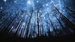 cosmic trees
