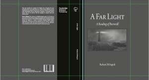 A Far Light dust jacket